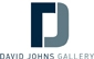 DAVID JOHNS GALLERY logo