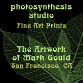 Mark Gould - Photosynthesis Studio, San Francisco, CA logo