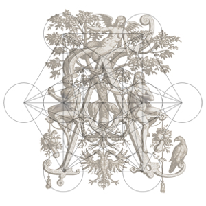Anima-Mundi logo