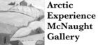 Arctic Experience McNaught Gallery logo