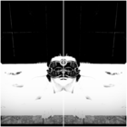 Max500_https-www-artsy-net-contemporary-art-fly