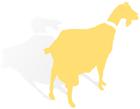 Al Ma'mal Foundation for Contemporary Art logo