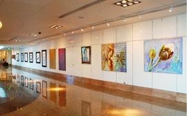 Galerie Belvedere photo