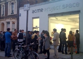 Acme Project Space photo