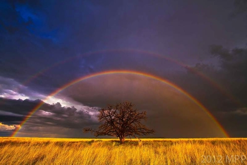 Divine Light image