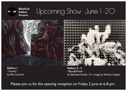 upcoming show 1-20 June  image