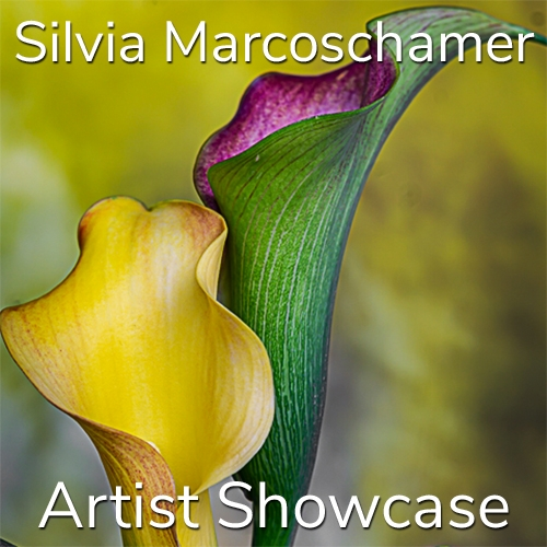Silvia Marcoschamer is Awarded an Artist Showcase Feature image