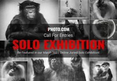Win a Solo Exhibition in March 2021 image