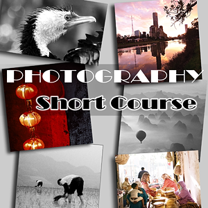 DSLR and Photography short course and workshop image